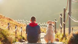 Veja destinos charmosos de inverno pra levar seu pet para as montanhas ()