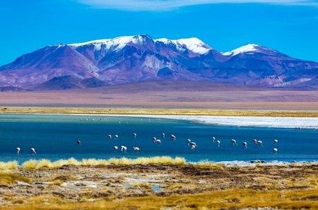 Trekking no salar do Atacama é uma das maravilhas do Chile