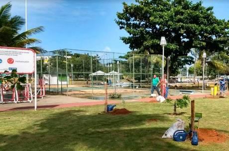 O segundo pomar urbano de Salvador será desenvolvido nesta sexta-feira (28), na Praça Guaratuba, em Stella Maris