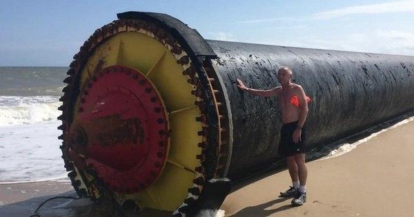 Cano gigante trazido pelo mar é encontrado em praia britânica