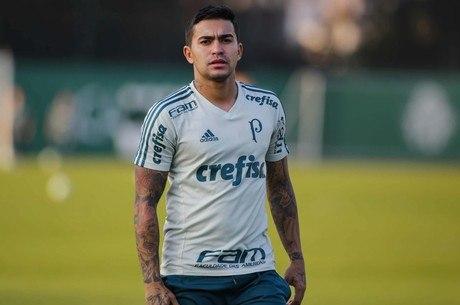 Dudu está de volta ao time do Palmeiras