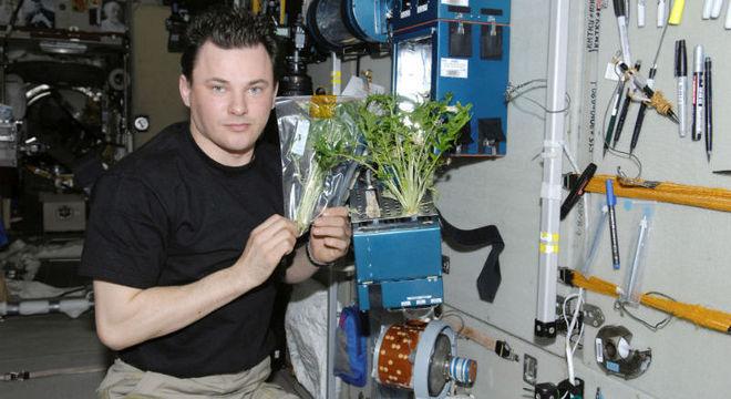 Projeto é um próximo passo ao cultivo de plantas na Estação Espacial Internacional