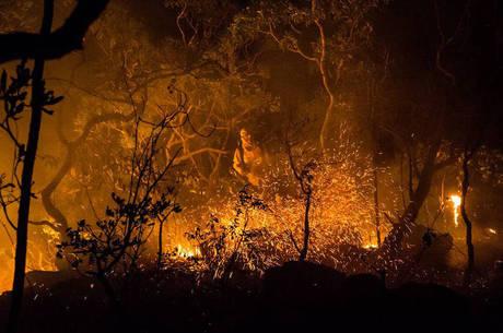 Fogo já consumiu 35 mil hectares do parque