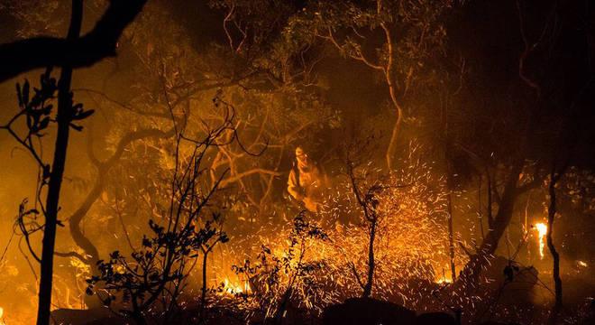 Quase 15% da área do parque, em Goiás, já queimaram no incêndio