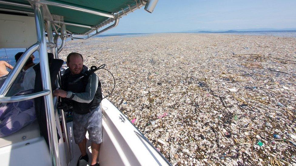 O gigantesco 'mar de lixo' no Caribe com plástico, animais mortos e até corpos