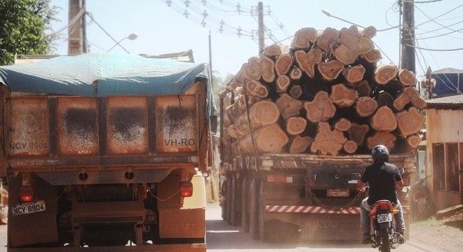 Atividades de desmatamento aumentaram nos últimos meses devido a baixa vigilância e a crise