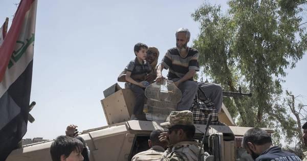 Daesh deixa 1,3 milhão de crianças deslocadas no Iraque, diz Unicef