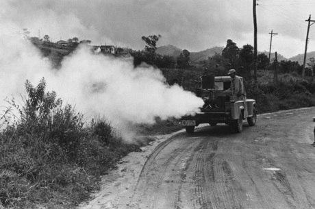 Política para erradicar mosquito era truculenta