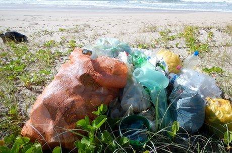 Levantamento foi feito em seis praias paulistas, três baianas e três alagoanas