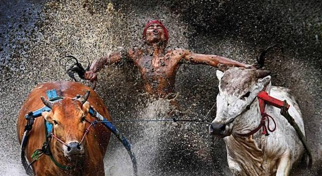 World Press Photo é uma das mais importantes do fotojornalismo internacional