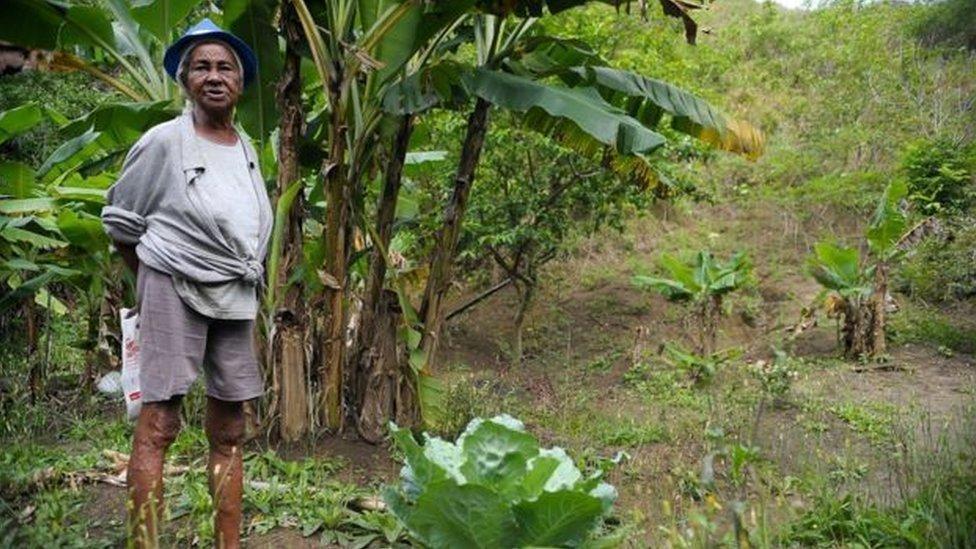 STF declara validade de decreto sobre demarcação de terras quilombolas