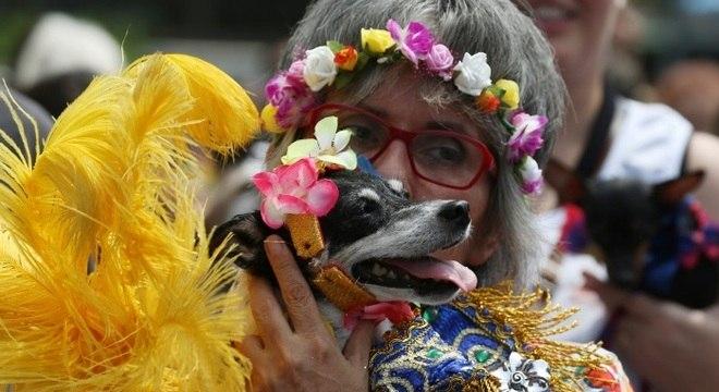 Muitos foliões curtem levar seus pets na folia