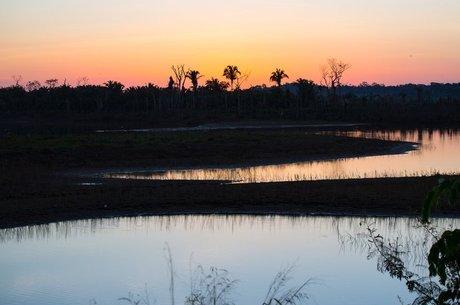 3no6l2bevd giohim8lg file?dimensions=460x305 - Áreas de conservação desmatadas na Amazônia estão perdendo proteção do governo, aponta estudo nos EUA