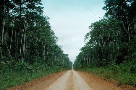 slolqbkw3 2ehwhzk516 file?dimensions=460x305 - Áreas de conservação desmatadas na Amazônia estão perdendo proteção do governo, aponta estudo nos EUA