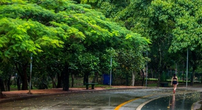 Caminhada será realizada no parque do Ibirapuera, na zona sul de São Paulo