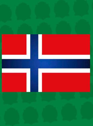 24º lugar - Noruega: 3 pontos (ouro: 1 / prata: 0 / bronze: 0)