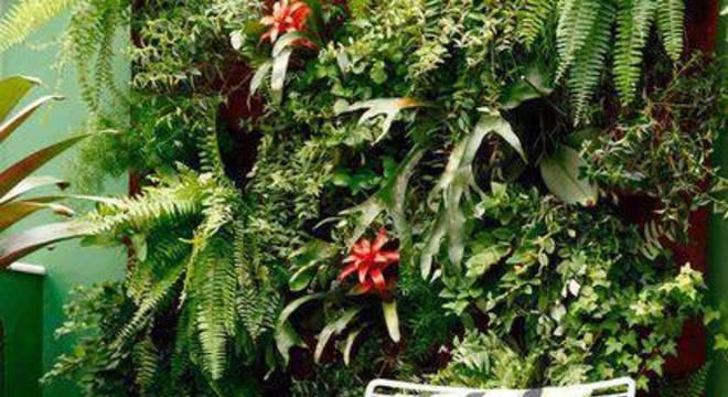 27239- jardim pequeno -roberto-robl-viva-decora