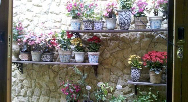 30465- jardim pequeno -eder-mattiolli-viva-decora