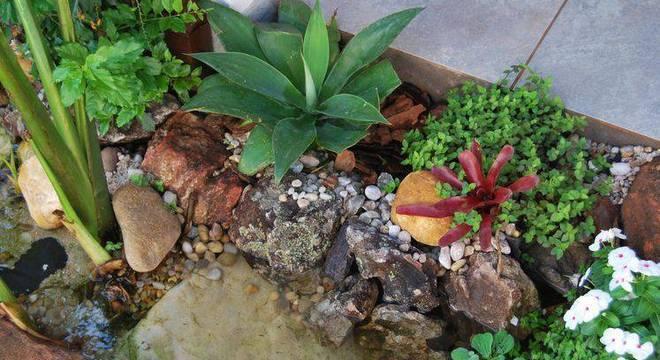 37105- jardim pequeno -carla-dadazio-viva-decora