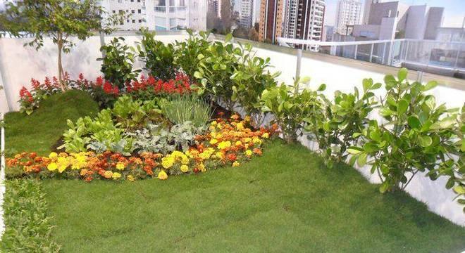49181- jardim pequeno -sueli-porwjan-viva-decora