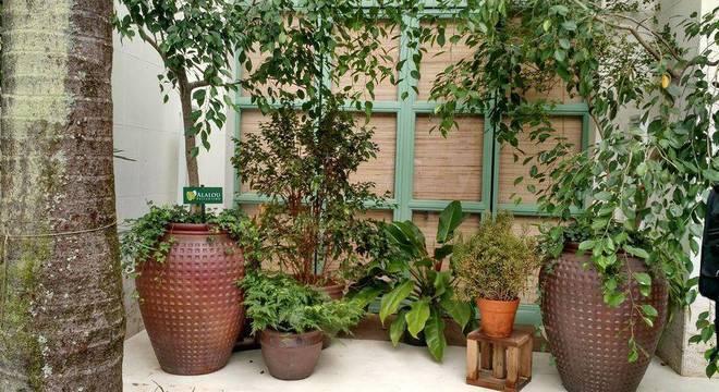 94376- jardim pequeno -alalou-paisagismo-viva-decora-94376