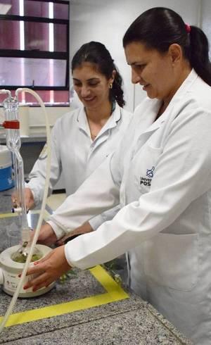 A bióloga Jéssica (à direita), em pesquisa com uso da erva baleeira