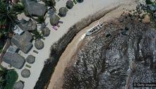 A proliferação recorde de algas no Atlântico que intriga os cientistas