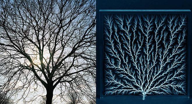 À esquerda, a silhueta de uma árvore. À direita, as figuras de Lichtenberg