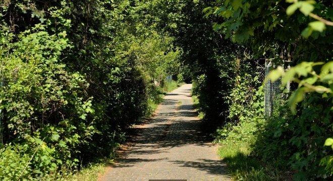 A Bertha Benz Memorial Route segue o curso que a pioneira percorreu em 1888, na primeira viagem de longa distância em um carro a gasolina