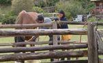 Durante os cuidados do dia a dia dos peões com os animais, Mariano e Jakelyne decidiram dar um