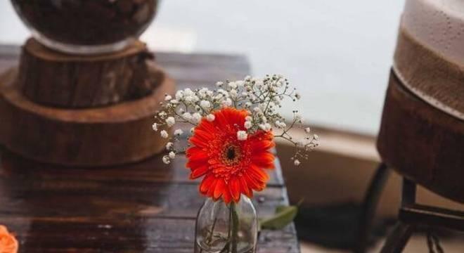 A flor de gérbera é delicada e alegra o ambiente