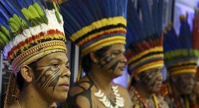 Proporção deste ano é a mesma da representação dos indígenas no total da população brasileira