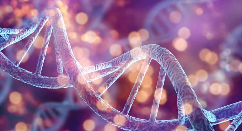 A super fruta também evita danos ao DNA.