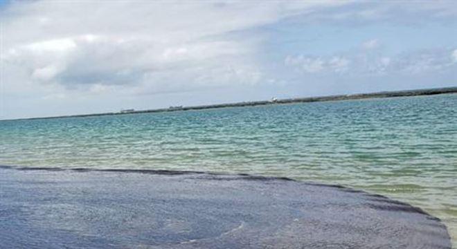 A Universidade de Miami propõe um método usado para rastrear destroços do avião da Malaysia Airlines no oceano Índico, em 2014, para identificar a origem do petróleo nas praias do Nordeste