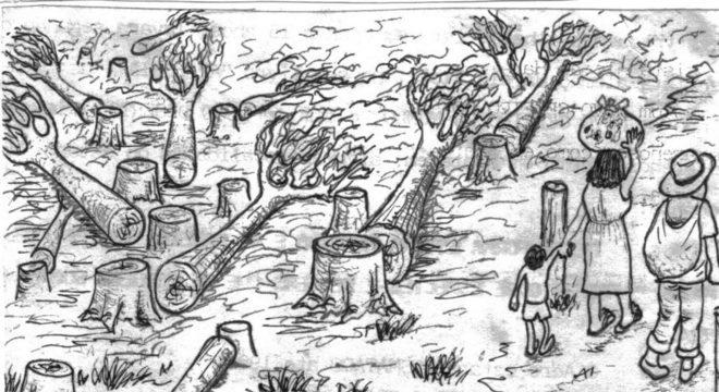 Zona Rural O Que E Importancia Exodo Rural E Agronegocio