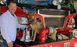 Após entrevistas, Roadie foi adotada por Jeremy Pell, chefe do corpo de bombeiros da região