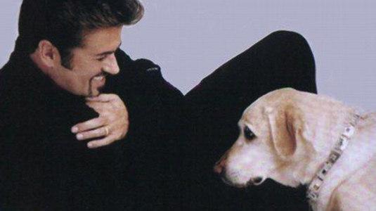 Conheça a triste história de Abby, a cachorrinha de George Michael