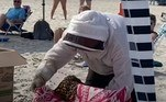 Enquanto os salva-vidas da praia mantinham os banhistas afastados do local.O apicultor acredita que as abelhas aterrissaram na praia depois de seguirem uma rainha até láVale o clique: Filha invade necrotério após pai ser declarado morto e o encontra vivo