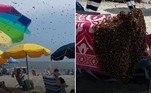 Milhares de abelhas fizeram uma toalha de pista de pouso após invadirem uma praia de Cape May, em Nova Jersey (EUA)
