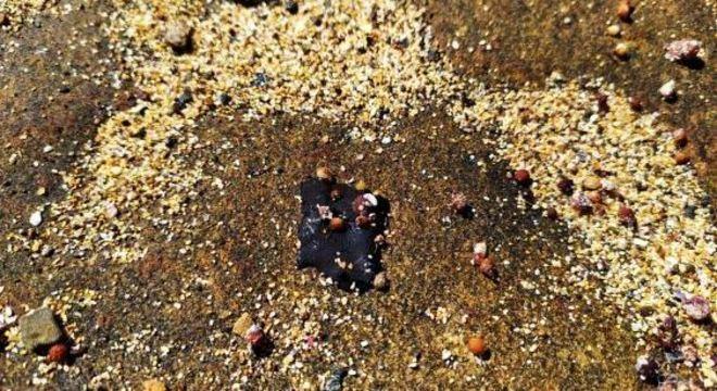 Mancha de óleo encontrada na Ilha de Santa Bárbara, em Abrolhos