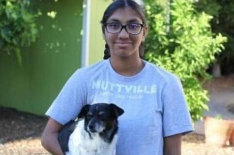 Menina ajuda abrigo que cuida de cães idosos