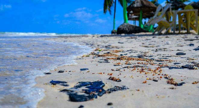 Mourão disse que Exército estará à disposição para limpar praias atingidas