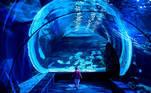 A child runs in the Shark Tunnel at the Sea Life Bangkok Ocean World aquarium in Bangkok on April 21, 2021. Mladen ANTONOV / AFP