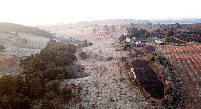 Geada cobre área rural de Varginha, em Minas Gerais