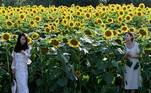 People pose for photos in a sunflower field in Beijing on July 9, 2021. Jade Gao / AFP
