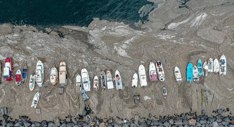 Camada de muco apareceu no Mar de Mármara, na Turquia