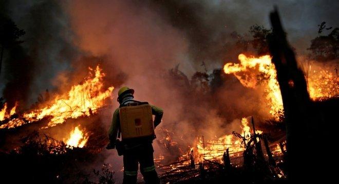 Biden afirmou que Brasil pode sofrer sanções econômicas se destruição da Amazônia continuar