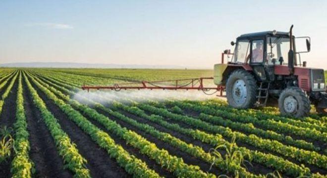 Setor de hortaliças e frutas foi um dos mais afetados pela atual crise