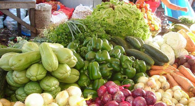 Agroecológica, Hortis