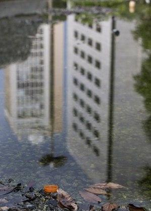 Cuidado com focos de água parada deve ser contínuo